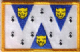 Shropshire Embroidered Flag Patch, style 08.